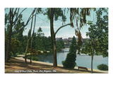Los Angeles, California - Scenic View in West Lake Park Poster by  Lantern Press