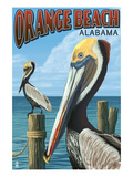 Orange Beach, Alabama - Brown Pelican Prints by  Lantern Press