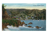Santa Catalina Island, California - Panoramic View of Avalon Art by  Lantern Press