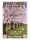 Door County, Wisconsin - Cherry Blossoms Print by  Lantern Press