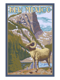 Big Horn Sheep - New Mexico Prints by  Lantern Press