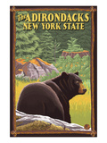 The Adirondacks, New York State - Black Bear in Forest Print by  Lantern Press