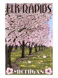 Elk Rapids, Michigan - Cherry Blossoms Art by Lantern Press 
