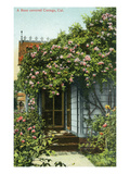 California - Exterior View of a Rose-Covered Cottage Prints by  Lantern Press