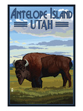 Antelope Island, Utah - Bison Scene Posters by  Lantern Press