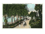 Palm Beach, Florida - Approach to Hotel Palm Beach Scene Prints by  Lantern Press