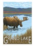Grand Lake, Colorado - Moose and Lake Prints by  Lantern Press