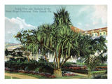 Palm Beach, Florida - Hotel Royal Poinciana Screw Pine and Gardens Posters by  Lantern Press