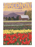 Tulip Fields - Wisconsin Art by  Lantern Press