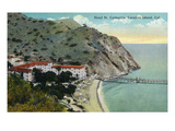 Santa Catalina Island, California - Aerial View of Hotel St. Catherine Print by  Lantern Press