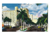 Miami, Florida - Biscayne Boulevard Scene Print by  Lantern Press