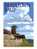 Brasstown Bald, Georgia - Tower and Benchmark Poster by  Lantern Press