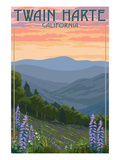 Twain Harte, California - Spring Flowers Prints by  Lantern Press