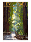 Henry Cowell Redwoods State Park - Pathway in Trees Print by  Lantern Press
