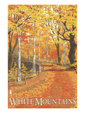 White Mountains, New Hampshire - Fall Colors Posters by  Lantern Press