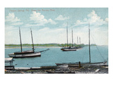 Tarpon Springs, Florida - Anclote River Scene Prints by  Lantern Press