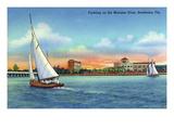 Bradenton, Florida - Sailboat on Manatee River Poster von  Lantern Press