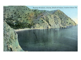 Santa Catalina Island, California - Aerial View of the Banning Residence, Canyon Mouth Posters by  Lantern Press
