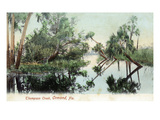 Ormond, Florida - View of Thompson Creek Art by Lantern Press 