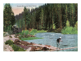Lake Tahoe, California - Truckee River Near Tahoe Tavern Scene Poster by  Lantern Press