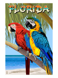 Florida - Parrots Poster by Lantern Press