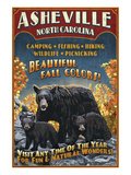 Asheville, North Carolina - Black Bear Art by  Lantern Press