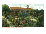 California - View of a Californian Rose Garden Prints by Lantern Press
