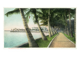 Palm Beach, Florida - View of the Walk Along Lake Worth Poster by  Lantern Press