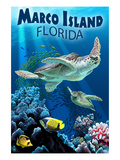 Marco Island, Florida - Sea Turtles Posters by  Lantern Press