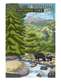 Leconte Creek and Mt. Leconte - Great Smoky Mountains National Park, TN Prints by  Lantern Press