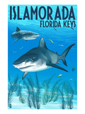 Islamorada, Florida Keys - Tiger Shark Prints by  Lantern Press