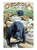 Georgia - Black Bears Fishing Posters by Lantern Press 