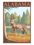 Alabama White Tailed Deer Kunstdrucke von  Lantern Press
