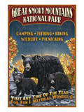 Great Smoky Mountains National Park - Black Bear Poster by  Lantern Press