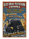 Blue Ridge Mountains, Virginia - Black Bear Family Prints by  Lantern Press