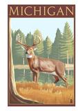 Michigan - White Tailed Deer Art Print by  Lantern Press