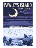 Pawleys Island, South Carolina - Baby Sea Turtles Poster von  Lantern Press
