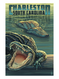 Charleston, South Carolina - Alligators Scene Poster von  Lantern Press
