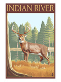 Indian River, Michigan - Deer Scene Poster by Lantern Press 