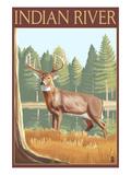 Indian River, Michigan - Deer Scene Poster by  Lantern Press