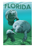Florida - Manatees Affiches par Lantern Press 
