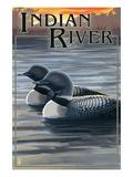 Indian River, Michigan - Loon Scene Affiches par  Lantern Press