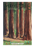 Mariposa Grove - Yosemite National Park, California Print by  Lantern Press