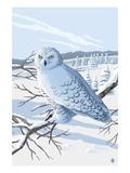 Lantern Press - Snowy Owl Plakát