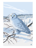 Snowy Owl Posters by  Lantern Press