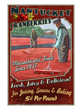Nantucket, Massachusetts - Cranberry Farm Poster by  Lantern Press