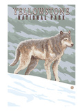Yellowstone National Park - Wolf in Forest Prints by  Lantern Press