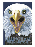 Bellingham, Washington - Eagle Up Close ポスター : ランターン・プレス