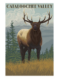 Cataloochee Valley, North Carolina - Elk Scene Posters by  Lantern Press