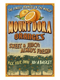 Mount Dora, Florida - Orange Orchard Sign Prints by  Lantern Press